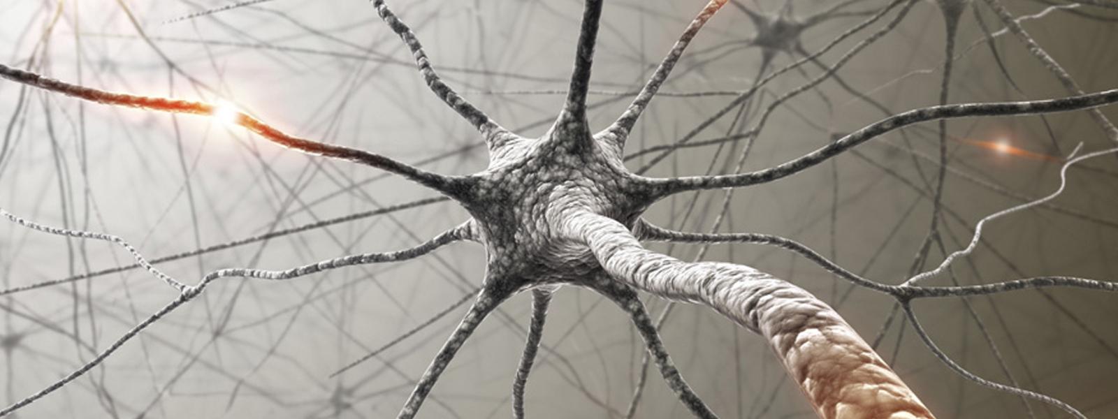 neuropain